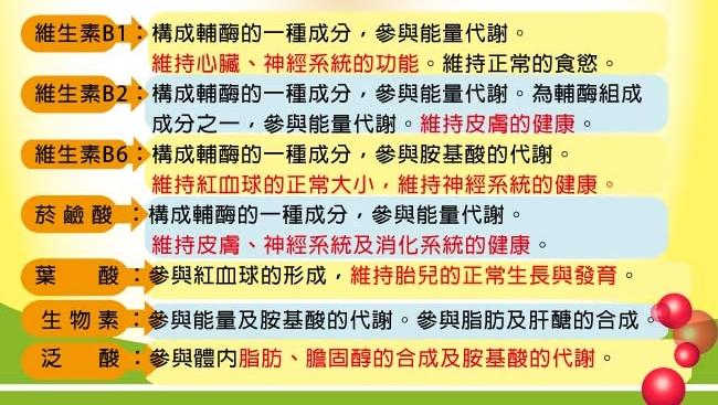 宏醫生技【天然B群】-25