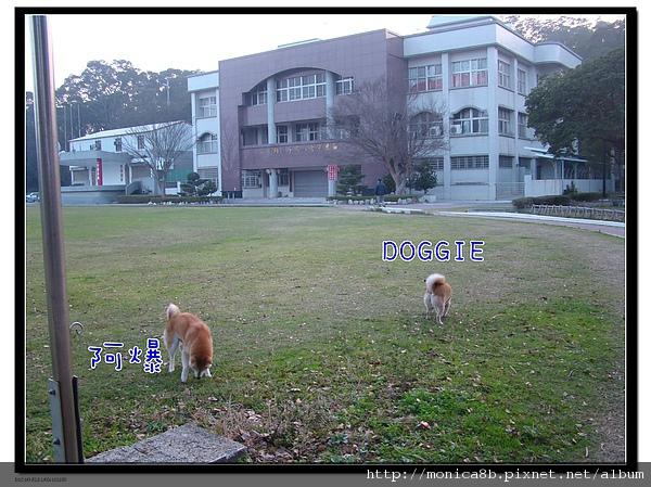 DSC06408-1.jpg
