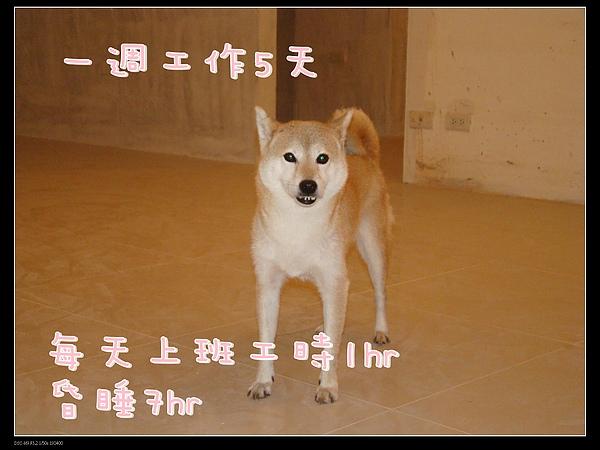 DSC04011-1.jpg