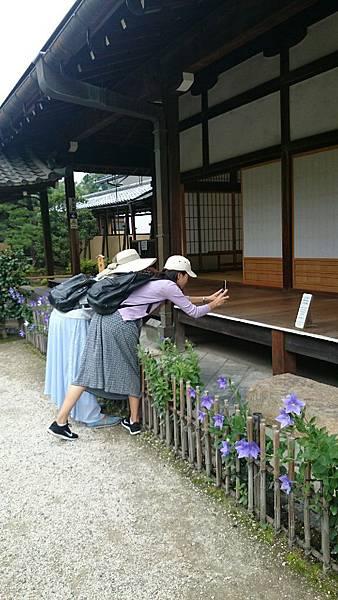 20150702京都_5809.jpg