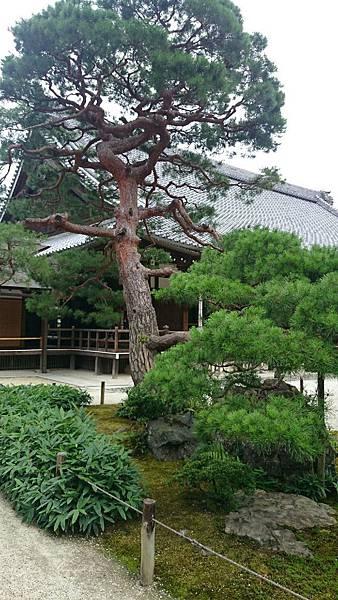 20150702京都_3795.jpg