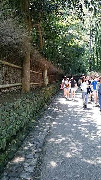 20150702京都_9564.jpg