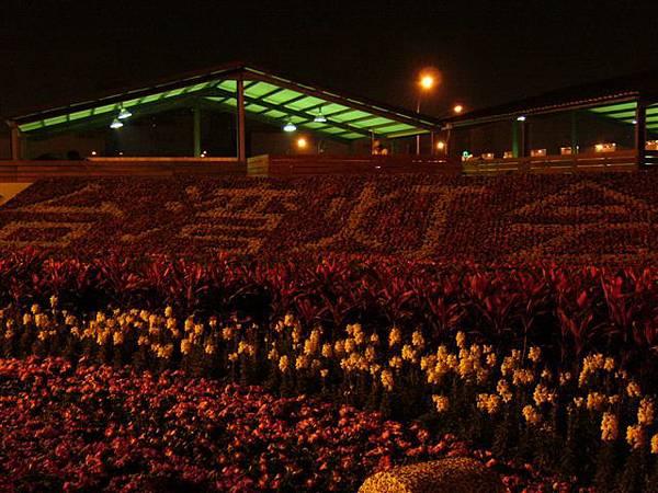 用花排出來的台灣燈會