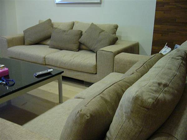 客廳,高檔的沙發