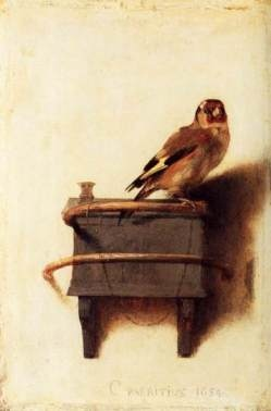 the goldfinch S