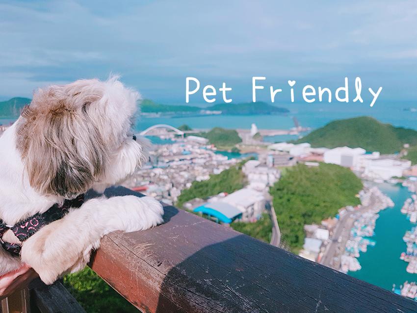 petfriendly02.jpg