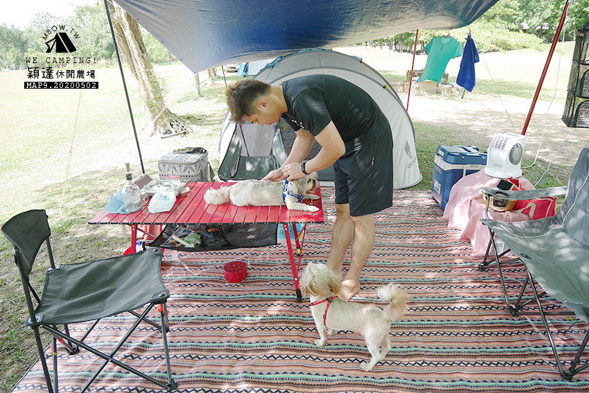 mbow9camping19.jpg