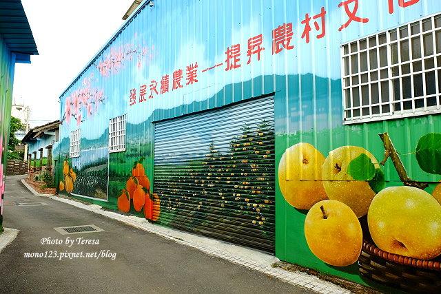 1439391694 4232291665 - 【台中新社】馬力埔彩繪小徑.新社也有彩繪村,以在地的風土人情、特色水果、香菇以畫,非常有在地色彩的彩繪村