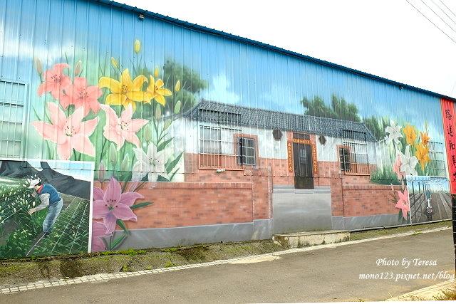 1439391709 1191291928 - 【台中新社】馬力埔彩繪小徑.新社也有彩繪村,以在地的風土人情、特色水果、香菇以畫,非常有在地色彩的彩繪村