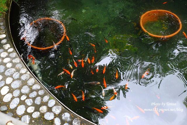 1448468277 2267064635 - 【台中潭子】東喜堂.佔地廣闊還有餵魚池,適和聚餐兼溜小孩的好地方,推德國豬腳和牛奶鍋