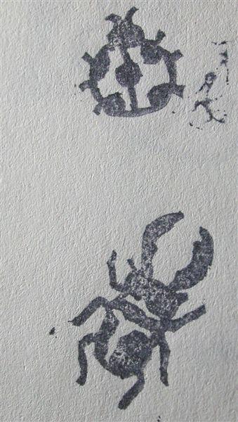 06&07 瓢蟲&鍬形蟲