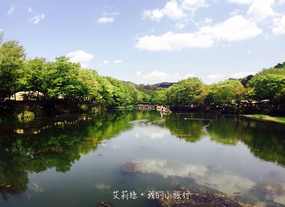 IMG_8354-s.jpg