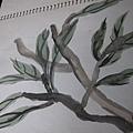 練習-枝葉