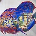 廣告顏料-神仙魚