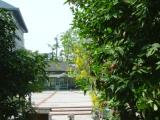 嘉義市玉山旅社:二樓窗外