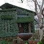 換穿綠裝的房子.JPG