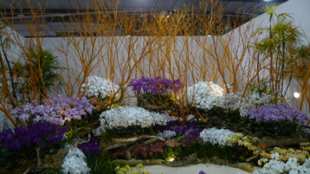 flora night 50.JPG