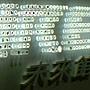 未來館入口 葉子標本.JPG