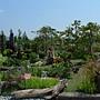 木 花園.JPG