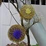 熱帶亞熱帶植物區  花藝.JPG