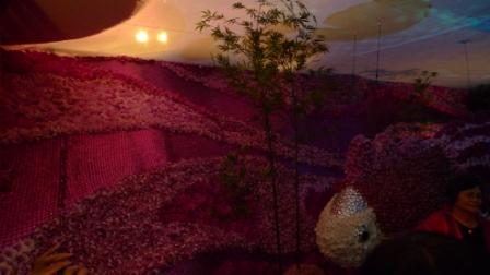 flora night 23.JPG