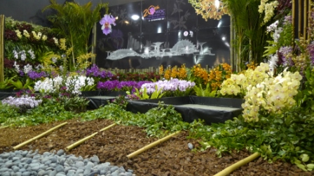 flora night 47.JPG