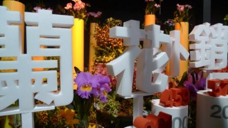 flora night 29.JPG