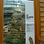 未來館 高山植物區.JPG