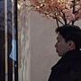 文化館花夢3.JPG