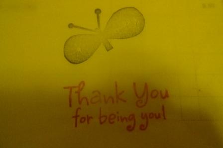 2打開內盒 飛來一隻可愛小蝴蝶.JPG