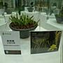 未來館 未來庭園  黃穗蘭.JPG