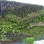 西安庭園2(6).JPG