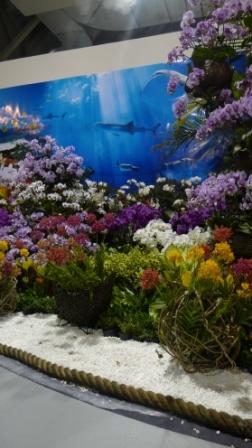 flora night 51.JPG