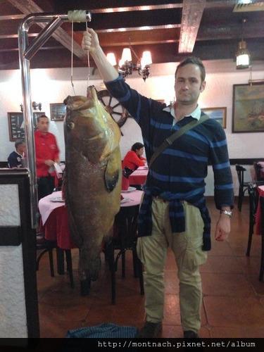 正好看到漁夫抬進這條石斑魚
