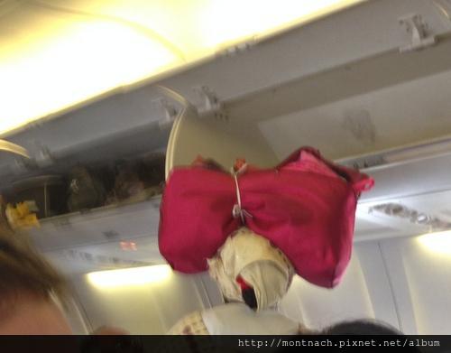頭頂著行李登機真方便