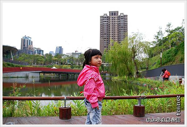 20121124-DSC_3340.JPG