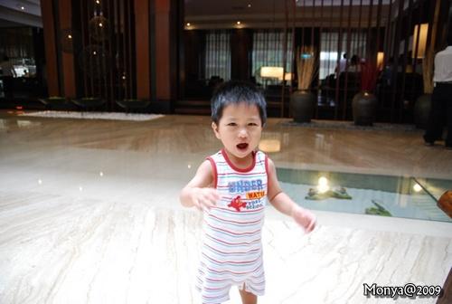 大寶很好奇的跑來跑去