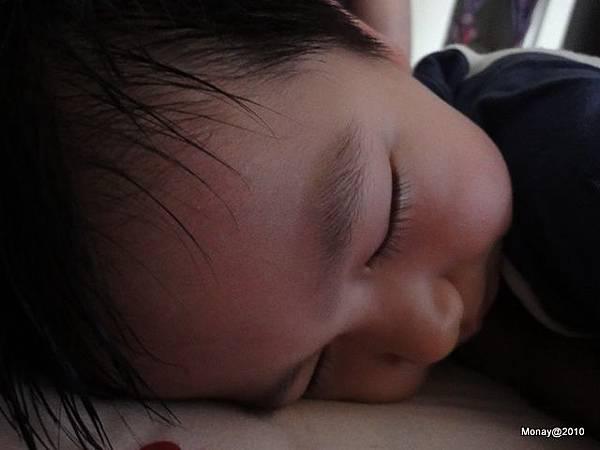 大寶睡香香