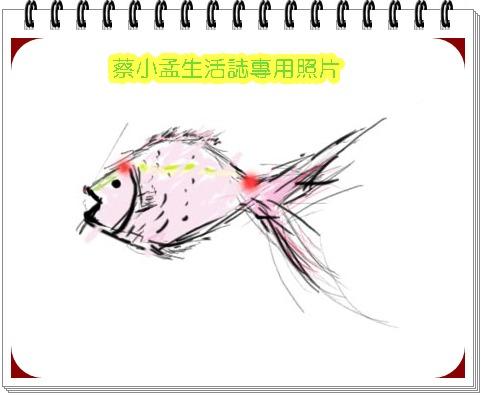 fish拷貝.jpg