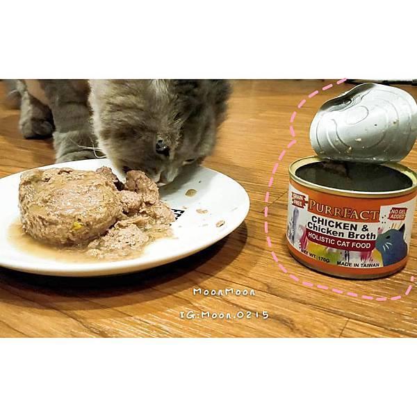 PURRFACT 波菲特貓用主食罐19