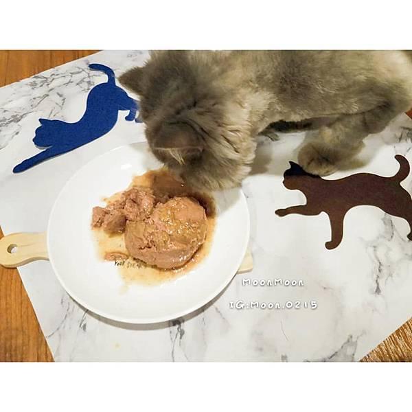 PURRFACT 波菲特貓用主食罐14