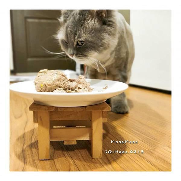 PURRFACT 波菲特貓用主食罐9.jpg