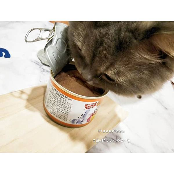 PURRFACT 波菲特貓用主食罐11
