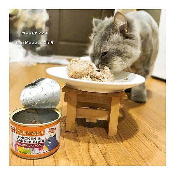 PURRFACT 波菲特貓用主食罐21