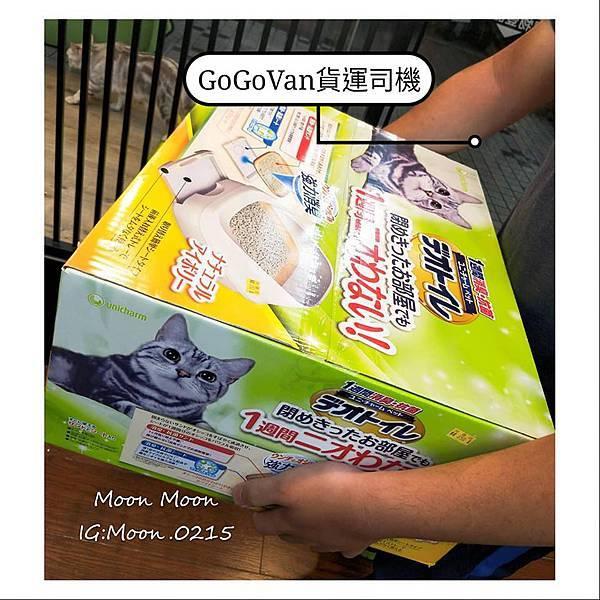 GoGoVan26.jpg