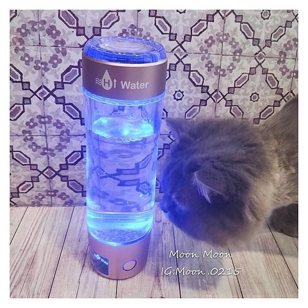 水素杯18.jpg