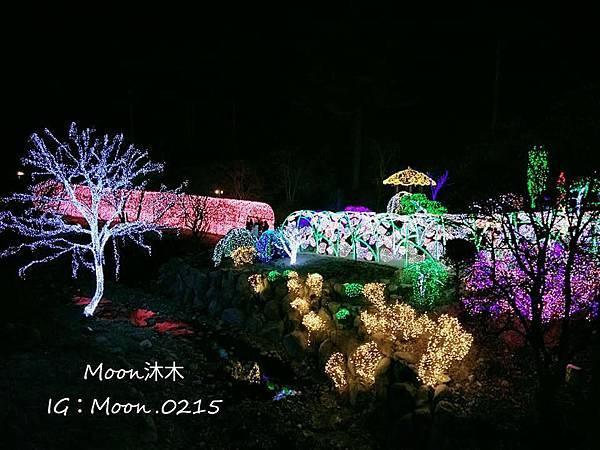 京畿道晨靜樹木園五色星光庭園展20191.jpg