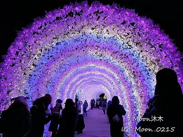 京畿道晨靜樹木園五色星光庭園展201914.jpg