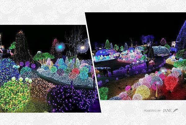 京畿道晨靜樹木園五色星光庭園展201923.jpg