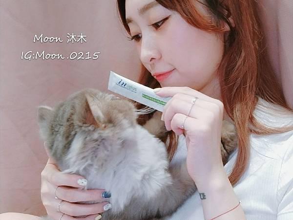 in plus 益生菌 貓評價 PA-5051 貓用益生菌+牛磺酸 海藻粉 艾斯克 寵物 食品_190501_0004.jpg